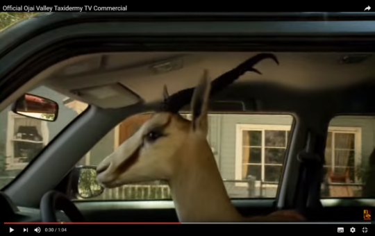 Verdens bedste dyrekonservator video